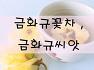 금화규씨앗 , 금화규꽃 , 금화규차 판매