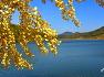 괴산 문광저수지의 가을