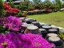 네 번째 시사집 예춘정가의 향기 출판기념식을 집 정원에서 하다(2019, 4,30)